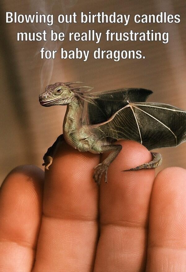 """Blowing out birthday candles must be really frustrating for baby dragons."" -Quote from @Merrill Montgomery , Image edit by Robert Tzurunkel"