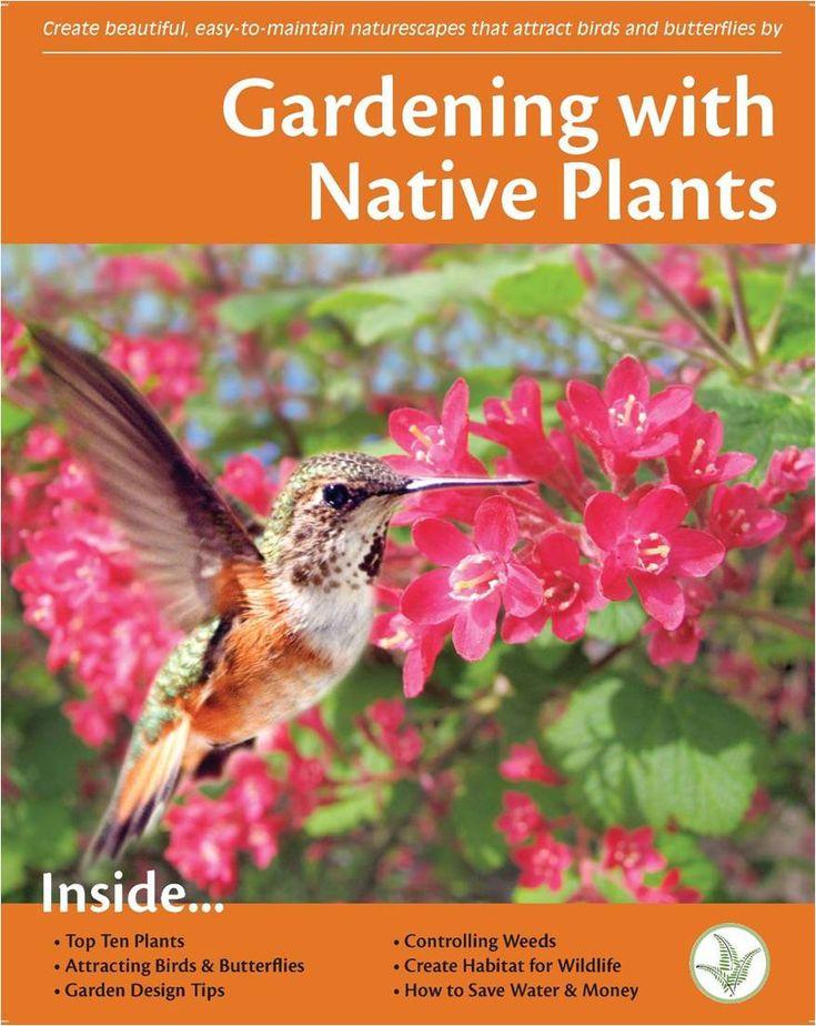 31 best drought tolerant plants  okanagan images on pinterest