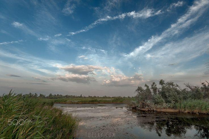 In still waters run deep ... Maybe ... - Somewhere on the Taman peninsula ... Temryuk district, Krasnodar region.