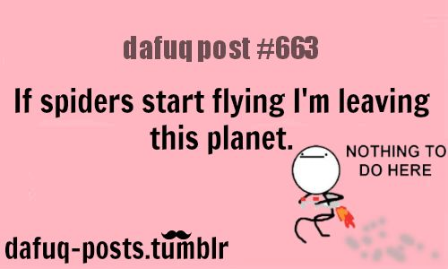 """if spiders start flying  FOR MORE OF """"DAFUQ POSTS"""" click HERE<—-  funny pictures, and relatable quotes"""