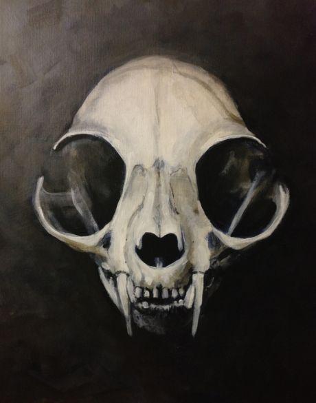 25 Best Ideas About Cat Skull On Pinterest Cat Skull