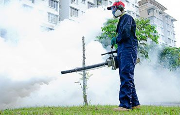 ''SUGUNA PEST CONTROL'' is one of the Best Pest Control Service in Chennai. We offer Industrial Pest Control, Commercial Pest Control, and Residential pest Control offerings in Chennai.