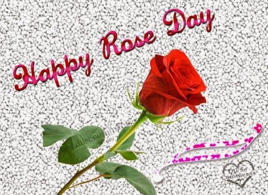 21 Rose Day Images, Pics, Wallpaper for Girlfrind/Boyfriend 2017