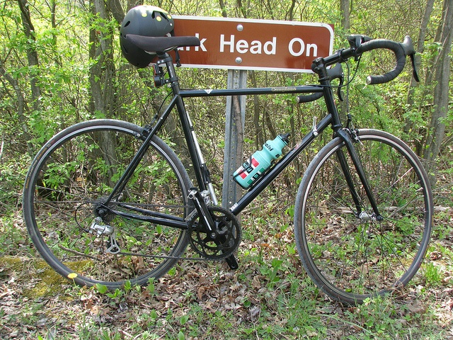 Cheap and cheerful, base model, steel framed Bianchi Campione. Does everything it says on the label.