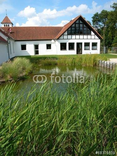 Schilf am Ufer eines Teich an der Ems Erlebniswelt in Schloß Holte-Stukenbrock