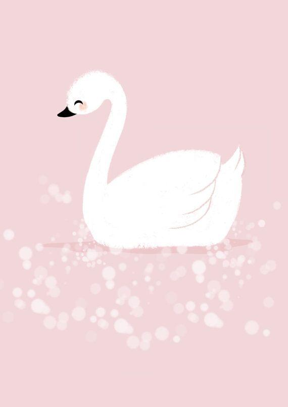 Isn't she lovely white swan www.mim-pi.com