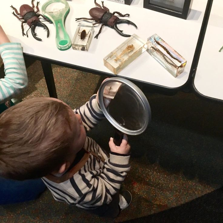 HOT: Little Kids' Day In at Scienceworks, 2 Booker Ave, Spotswood http://tothotornot.com/2016/10/little-kids-day-in-scienceworks/