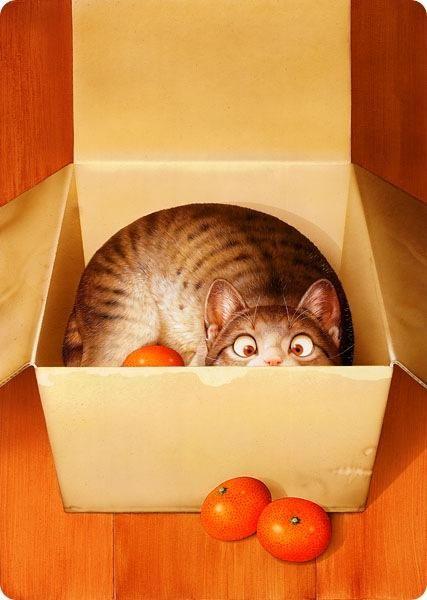 Кошки ( котята , коты , котики ) и прочие звери от Макото Мурамацу - Ярмарка Мастеров - ручная работа, handmade