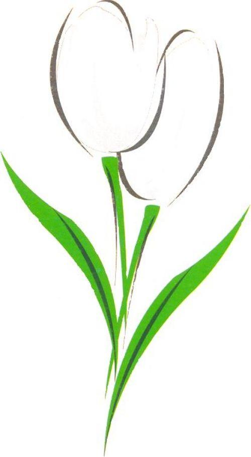 tulipan dibujo - Buscar con Google
