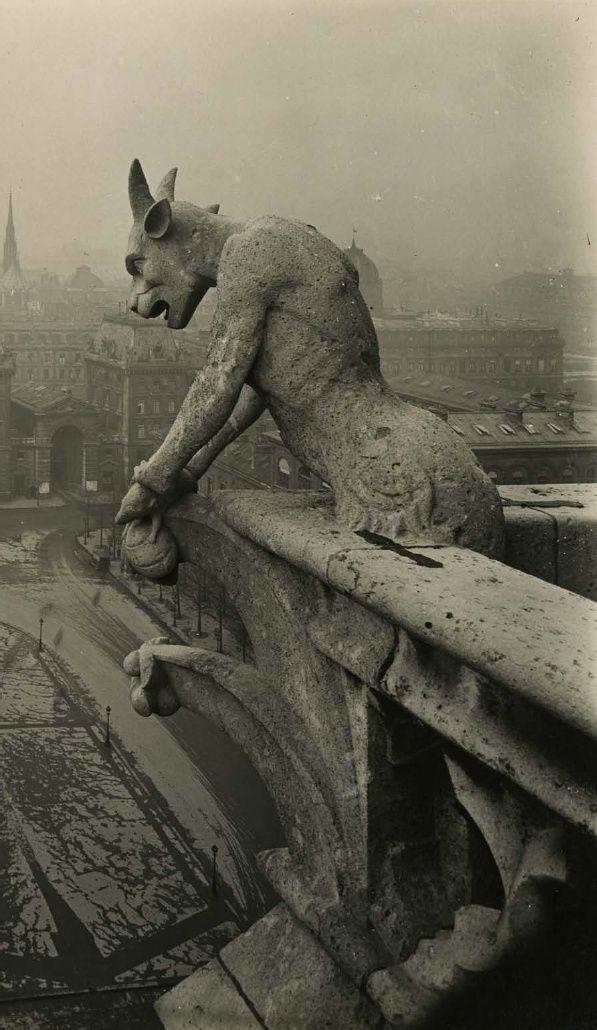 Notre-Dame, Paris ca. 1920, photographer Pierre-Yves Petit