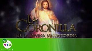 Coronilla De La Divina Misericordia (P. Fredy Cordoba) - Tele VID - YouTube