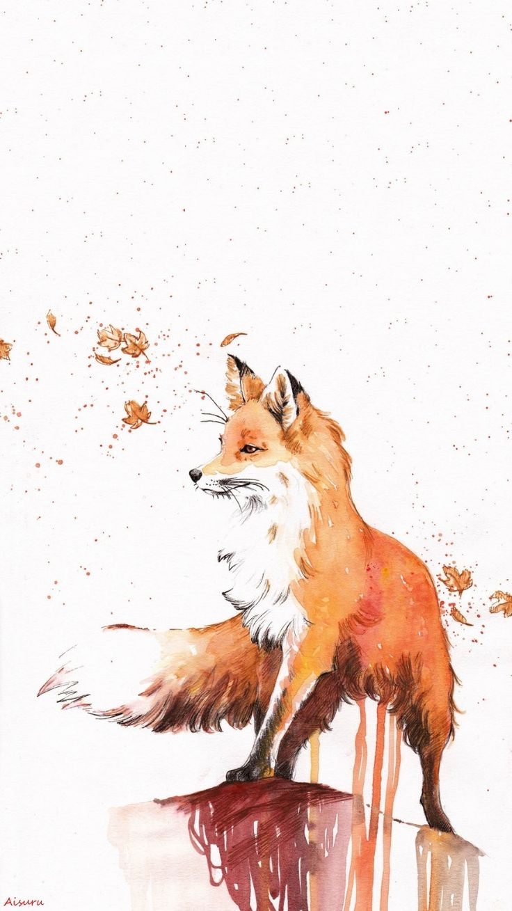 Fox Wallpaper IPhone my edition A.Aisuru