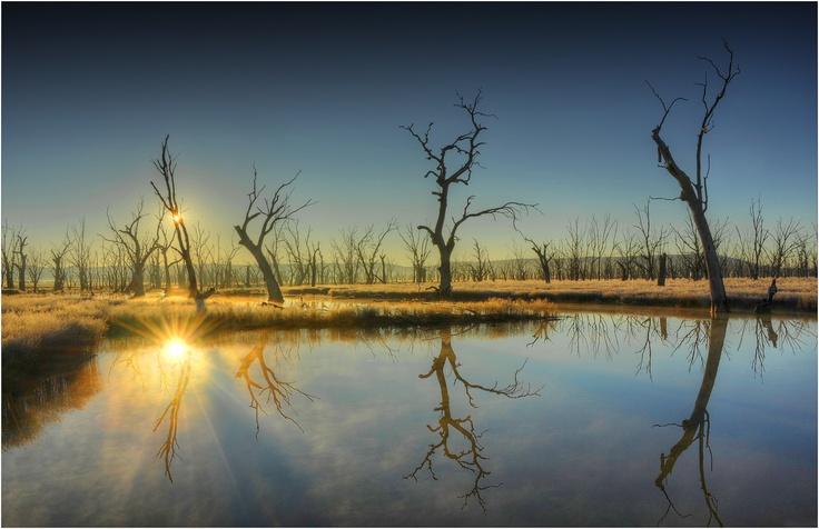 Double-Sunstar-Winton. Ian Rolfe Photography.