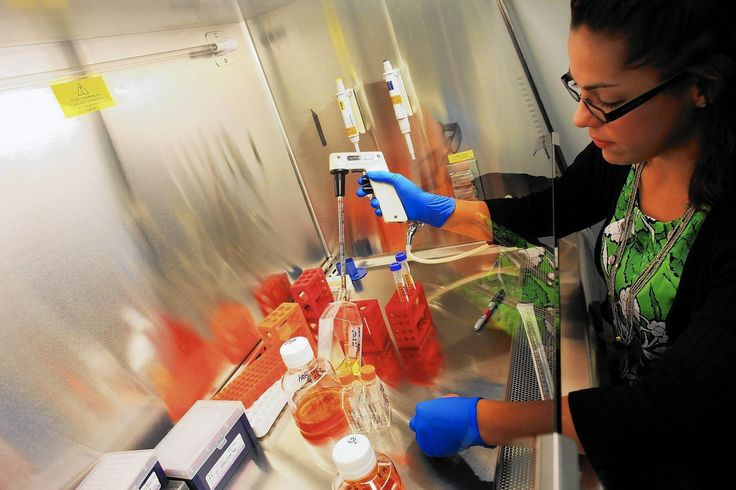 Ten years in, California's stem cell program is getting a reboot  Turning 10 years old may not quite mark adolescence for a human child, but for a major government research effort such as California's stem cell program, it's well past middle age.  http://www.latimes.com/business/hiltzik/la-fi-hiltzik-20150104-column.html