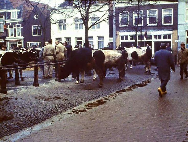DE KOEMARKT. 1973.