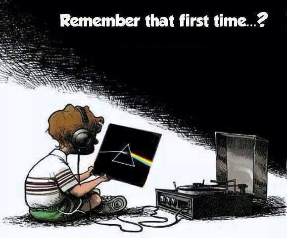 131 Best Images About Pink Floyd Funny On Pinterest