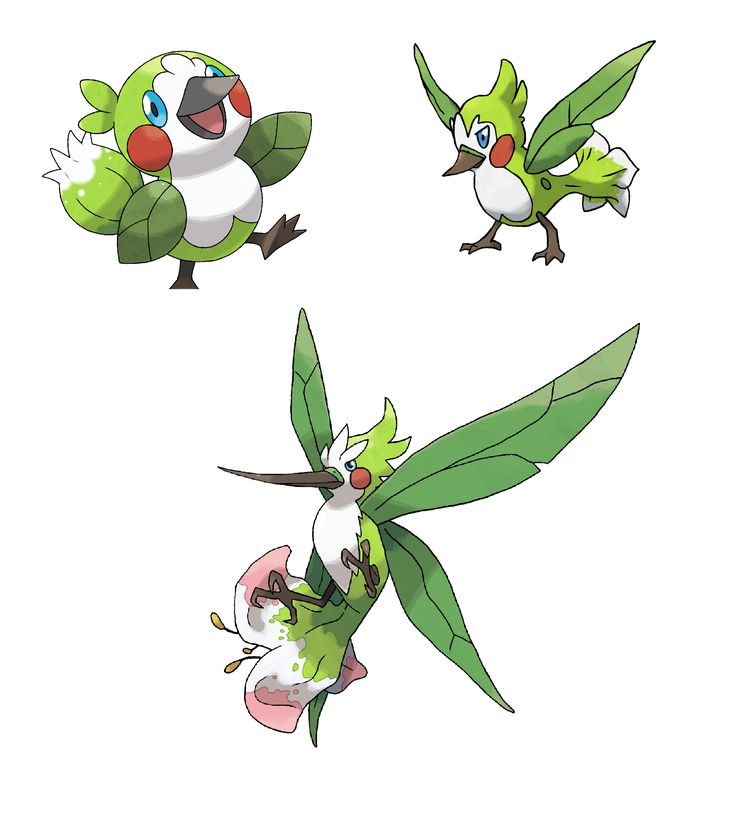 You don't know how excited this makes me for gen 7. Not for megas. For the new pokemon. Grass hummingbirds? So me.