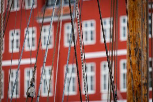 Danish Red & White
