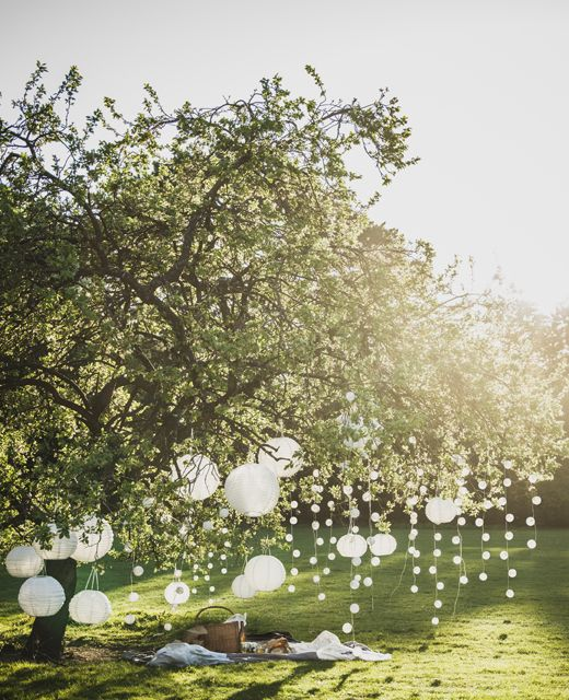 SOLVINDEN Dekoration für Lichterkette Kugel weiß an Lichterketten, die in einem Baum hängen.