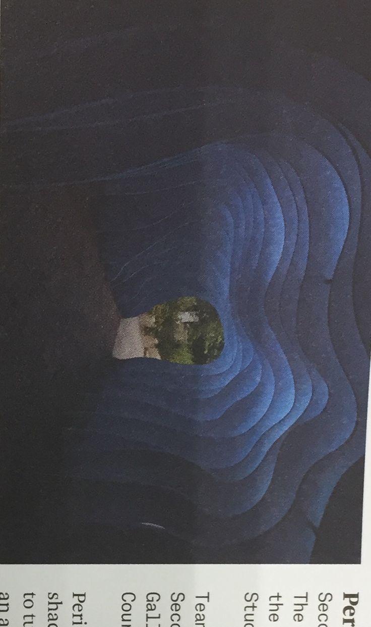 Peritoneum, Book, 2012