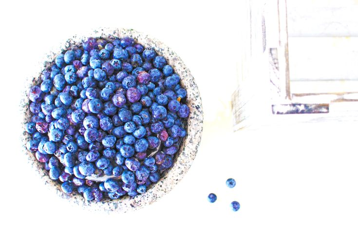 The Benefits of Blueberries - Human Rights, Nutrition & Fresh Recipes |  Pinteresting Against Poverty