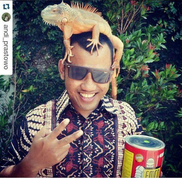 Foto kiriman: @Andi_Prastowo  Liat nih si Boy... sukanya naik kepala.. hampir foto2 kita semua pasti nemplok ke kepala..  Lucuu sekali. Foto ini diambil ditaman depan rumahku ya @emcopaint Kita sering juga bercanda disana. Pagi ataupun malam.  #AnimalLoversEMCO