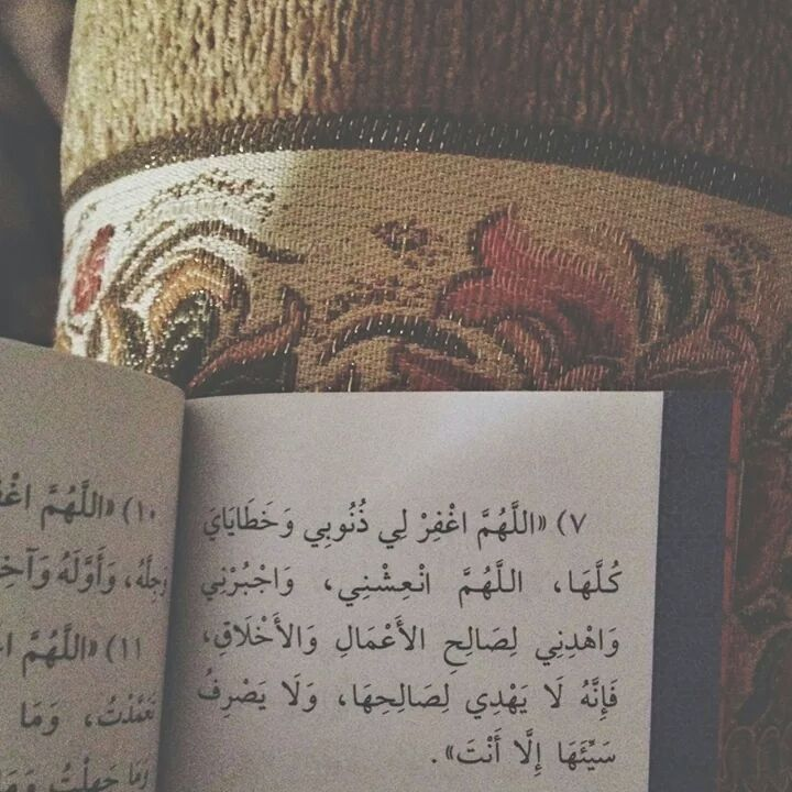 Hadeer Al-Baroudi : Photo