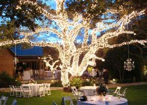 87 best garden wedding decor images on pinterest decor wedding outdoor reception decoration ideas garden wedding wedding decor junglespirit Images