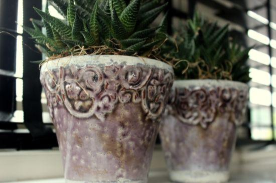 vensterbank grote potten - Google zoeken