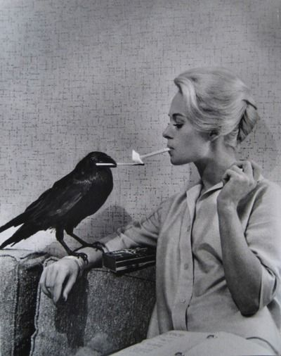 Tippi Hedren and friend. Don't know if I should laugh or be creeped out.