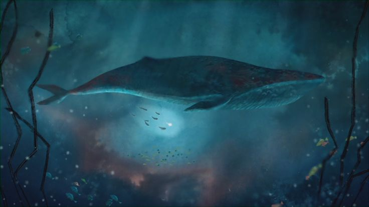Scene from Song of the Sea, Directed by Tomm Moore #animation #songofthesea