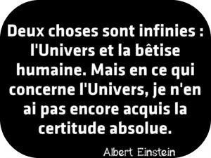 """""""Deux choses sont infinies : l'Univers et la bêtise humaine. Mais en ce qui concerne l'Univers, je n'en ai pas encore acquis la certitude absolue."""" Albert Einstein"""