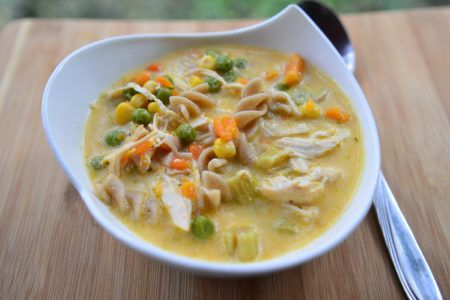 slow-cooker-homestyle-chicken-noodle-soup-recipe-1