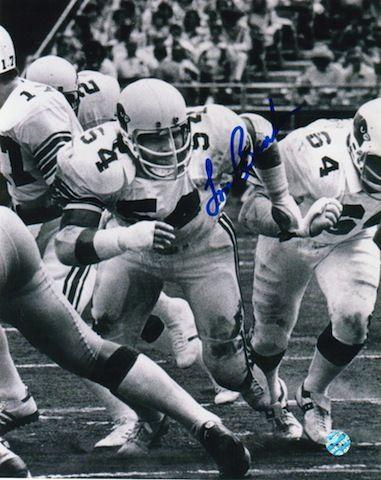 Autographed Tom Banks St. Louis Cardinals (Football) 8x10 Photo