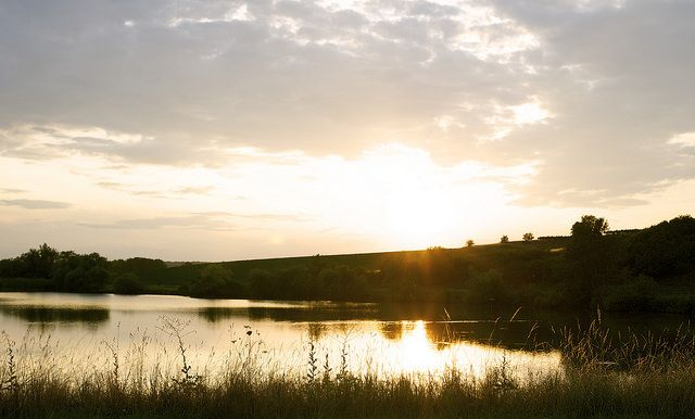 golden hour photography | Katzelsdorf | Flickr - Photo Sharing!