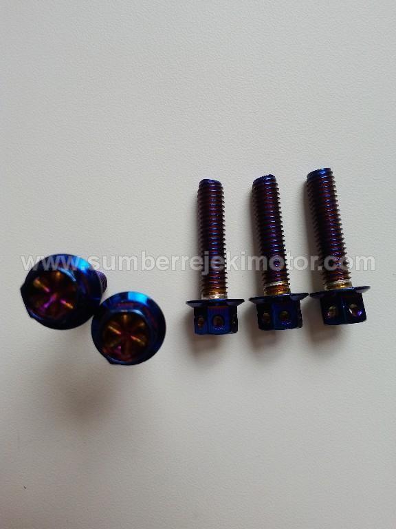 Baut Probolt 6x25 Flower Rainbow Blue