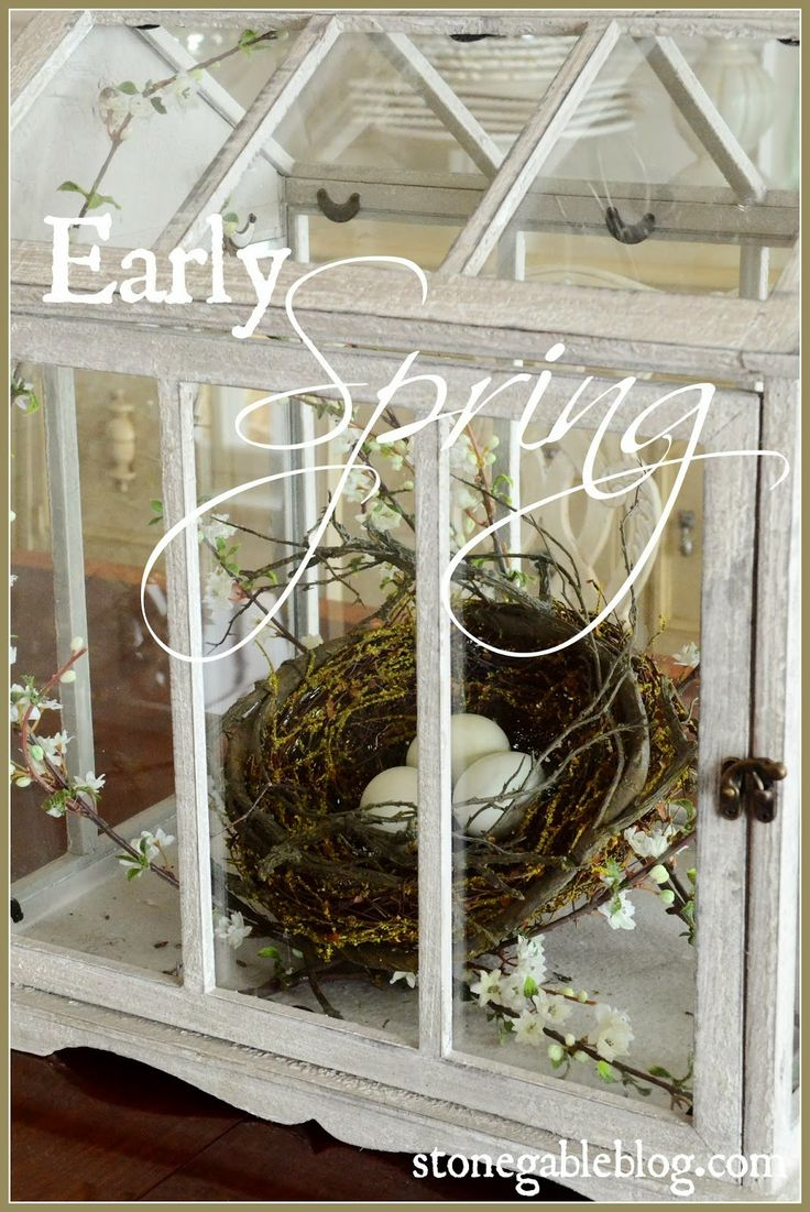 Cute Spring vingette with nest and flowering branch inside of a terrarium...LOVE!