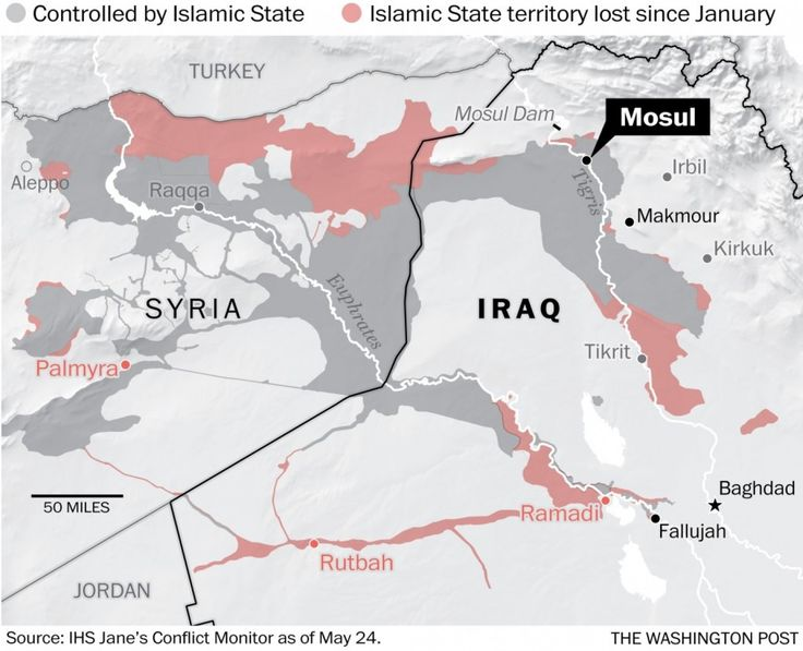 Islamic State has lost this much territory in Iraq and Syria this year.