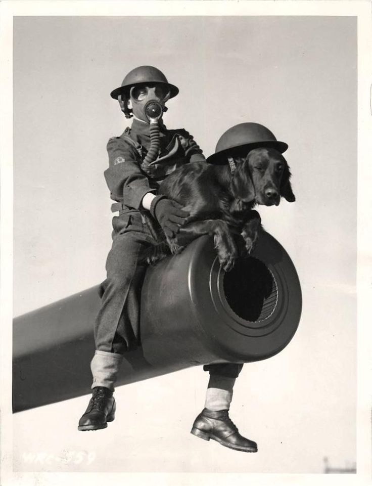 1941- Gas-masked Canadian soldier with mascot dog perched on the barrel of one of Canada's East Coast defense guns.