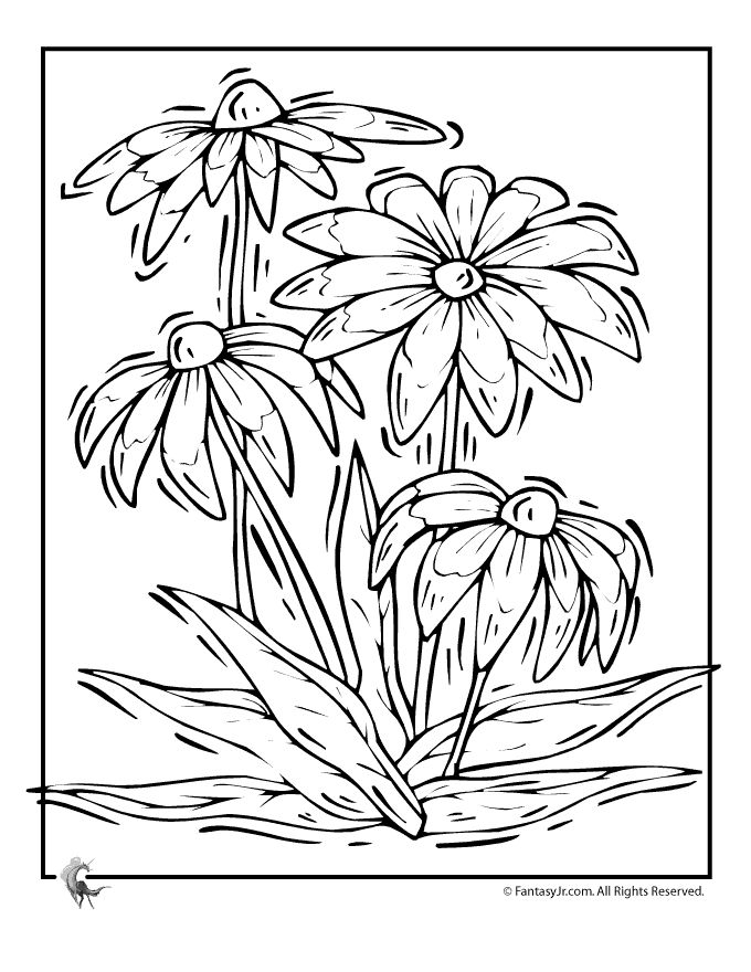 1000 images about Coloring pages for adult on Pinterest