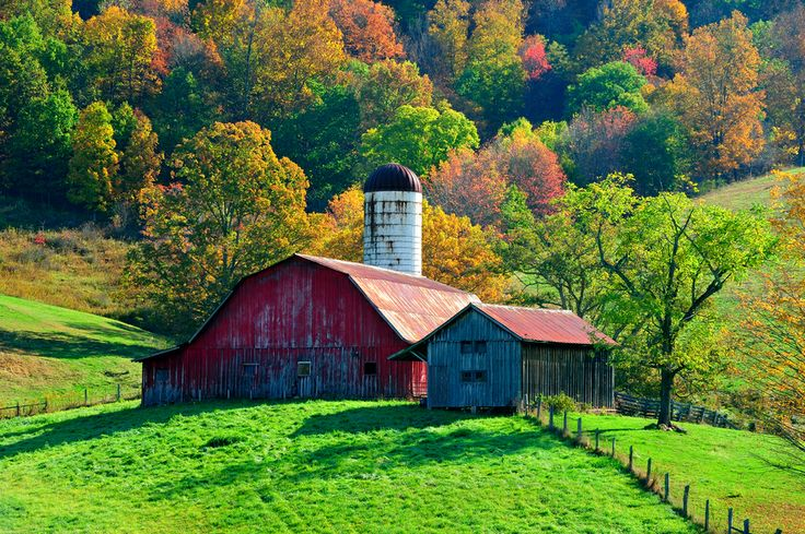 A West Virginia farm in the early morning light of a September day.