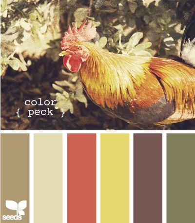 color peck: Farm, Color Palettes, Design Seeds, Color Pallette, Kitchen Colors, Color Pallets, Paint Colors, Chicken Colors