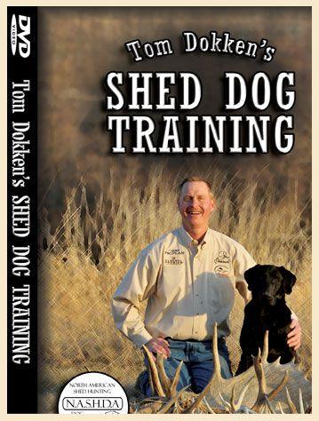 Shed Hunting Dokken Shed Dog Training DVD