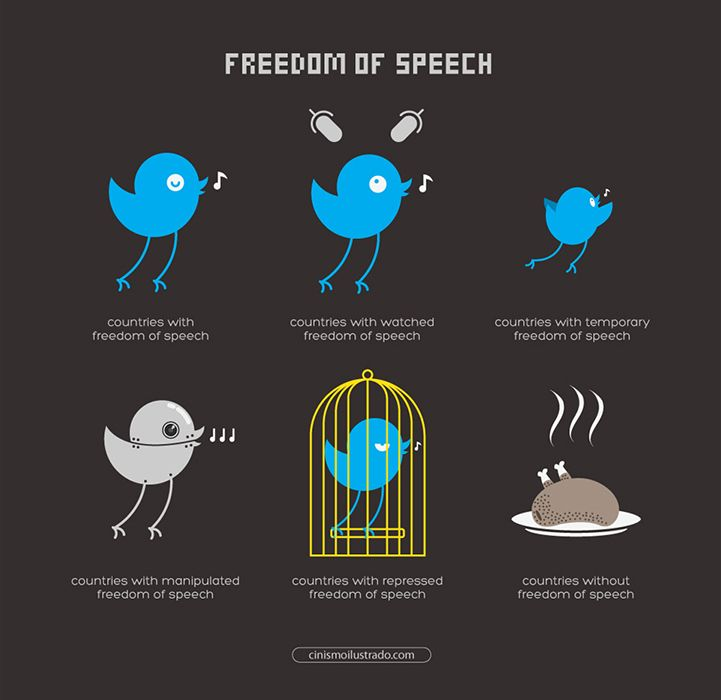 Freedom Of Speech Examples Image Collections Example Cover Letter