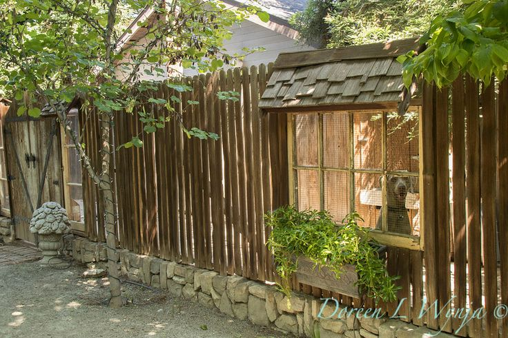 Dog Kennels Visalia Ca