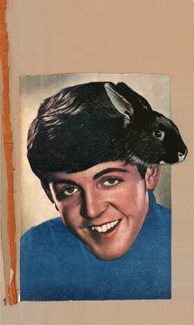 Graham Rawle: Paul McCartney's hair