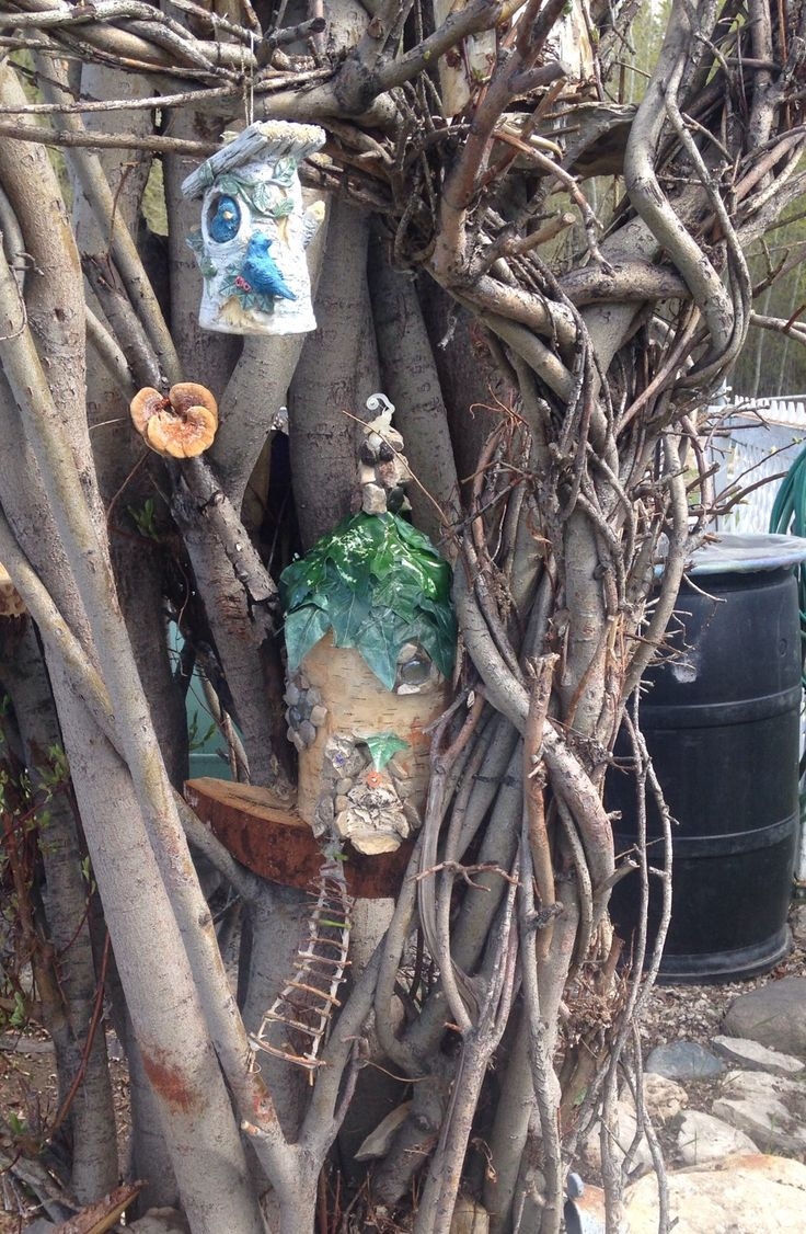 Woodland fairy houses found a home in willow tree.