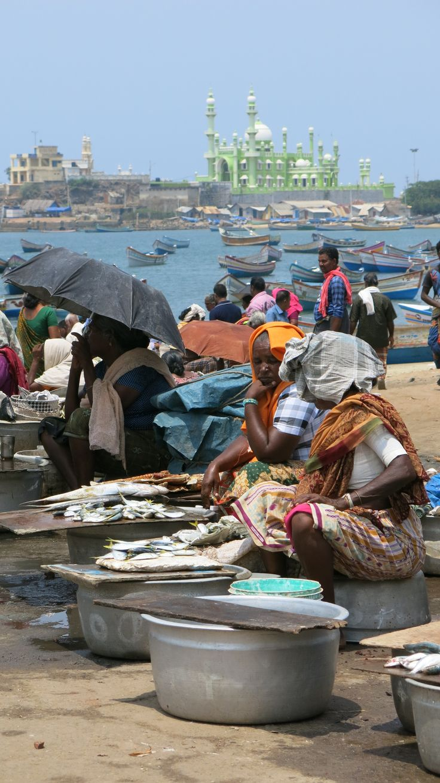 Fish market in Kovalam, India