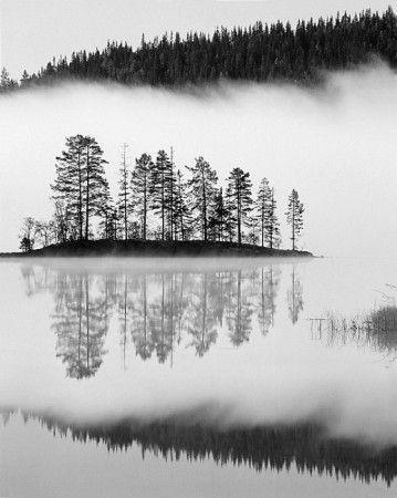Dense fog by Bror Johansson