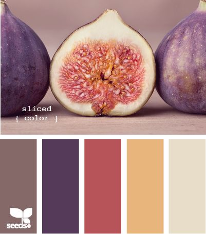Color Palettes -- this is just so pretty